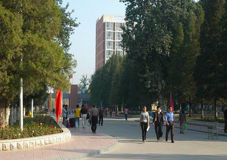 北京の東側に位置し、どこかアットホームな雰囲気が漂う