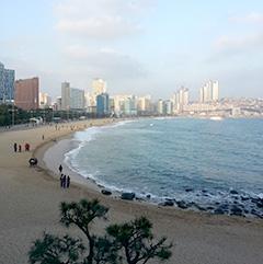 ▲集中できなくなったら海辺を散歩。ソウルにはない良さです。